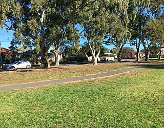 Warradale Park Reserve Grass 4