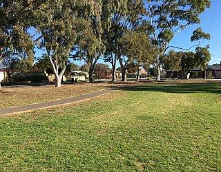 Warradale Park Reserve Grass 5