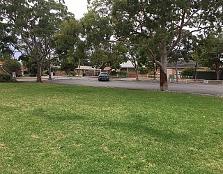 York Avenue Reserve Grass 1