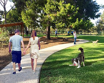 Hazelmere Road Reserve Dog Park Indicative Image