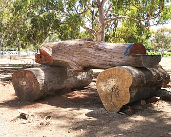Oaklands Reserve Oaklands Estate Reserve Construction Nature Play Equipment January 2019