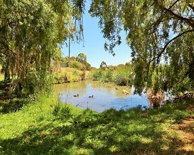 Lucretia Way Reserve 19