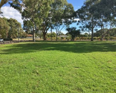Parsons Grove Reserve Image 5
