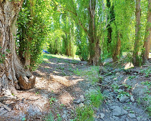 Christopher Grove Reserve Creek 3