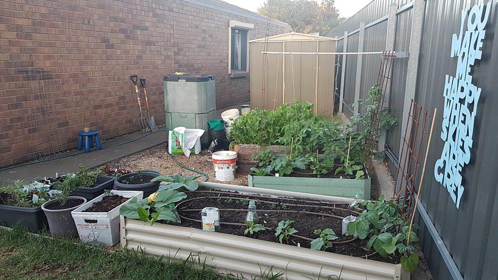 Gardening showcase 2020 13