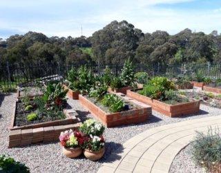 Trott Park Community Garden1sm