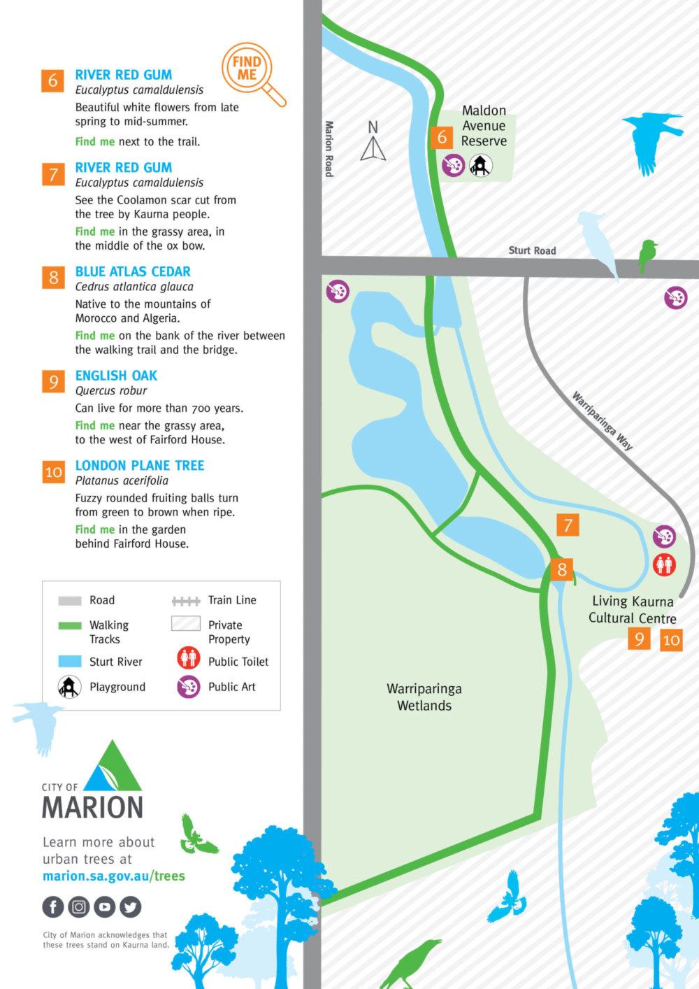 Warripari Sturt River Tree Trail Map 2