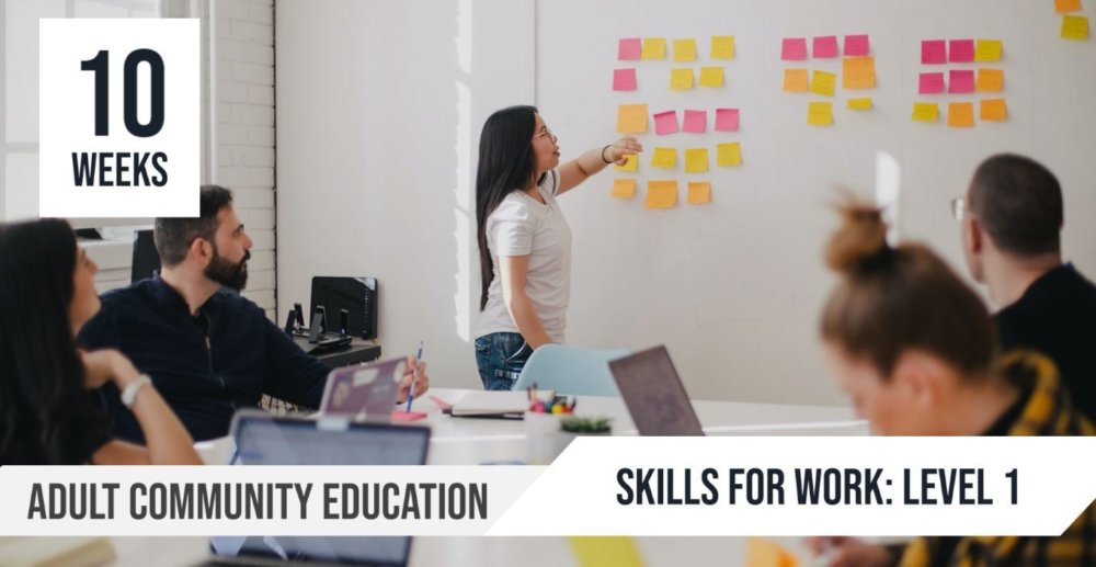 ACE Skills for Work Level 1 Term 4 2020