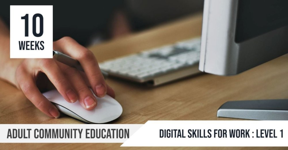 Digital Skills for Work Level 1