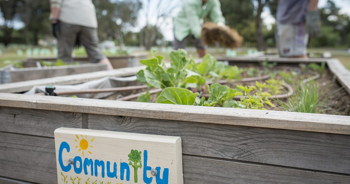 Join A Community Garden Community Gardens City Of Marion