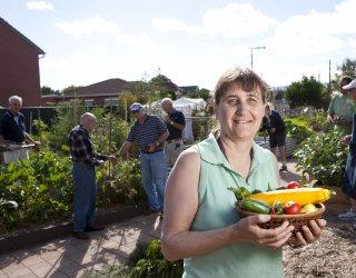 Glandore Community Garden Image 2