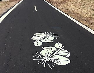 Glow Path Muntries