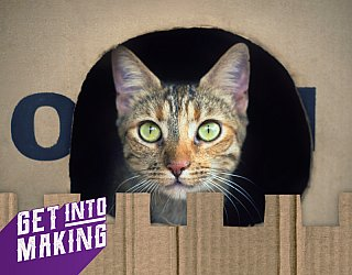 Get Into Making Cat Castles