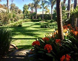 Gardening showcase 2020 5