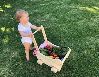 Gardening showcase 2020 9
