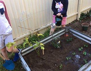 Gardening Showcase 102