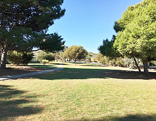 Nannigai Drive Reserve Grass 5