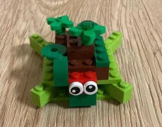 Turtle Daiwik