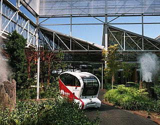 Autonomous Vehicle Urban Forest Tonsley