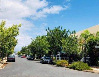 Edwardstown streetscape