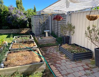 Gardening showcase 2020 101