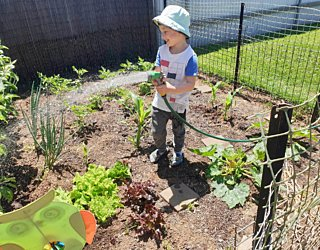 Gardening showcase 2020 102