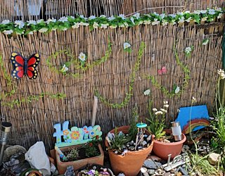 Gardening showcase 2020 15