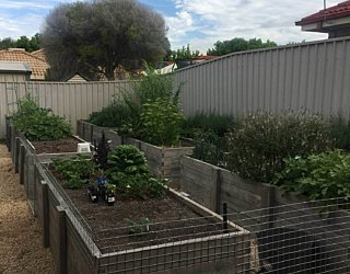 Gardening showcase 2020 22