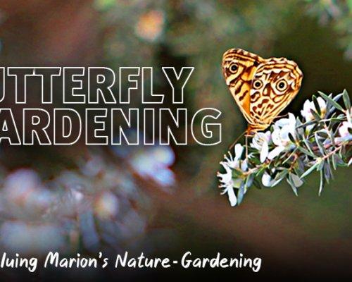 Butterfly Gardening 003