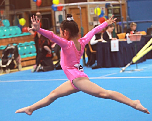 Gymnastics Come and Try 2