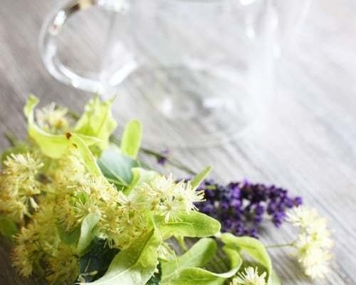 Herbal Remedies for Colds Flu