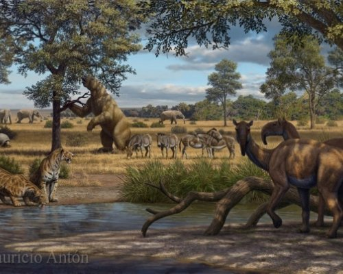 Large extinct animals