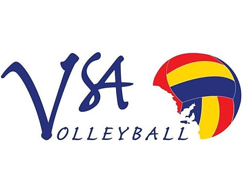 Volleyballsa