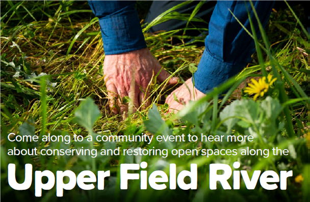 Upper field river planting event
