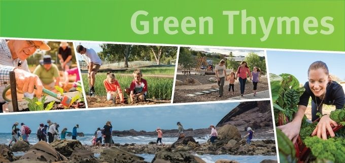 Green Thymes Email Banner